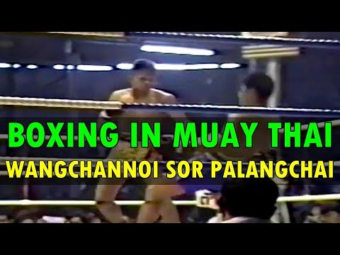 Boxing in Muay Thai: Wangchannoi Sor Palangchai