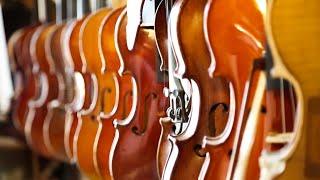 La tete dans les violons Bande Annonce.