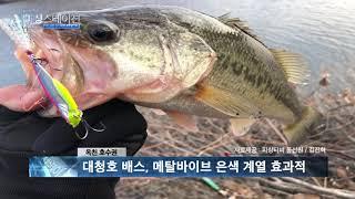 피싱스테이션 루어조황 1월17일