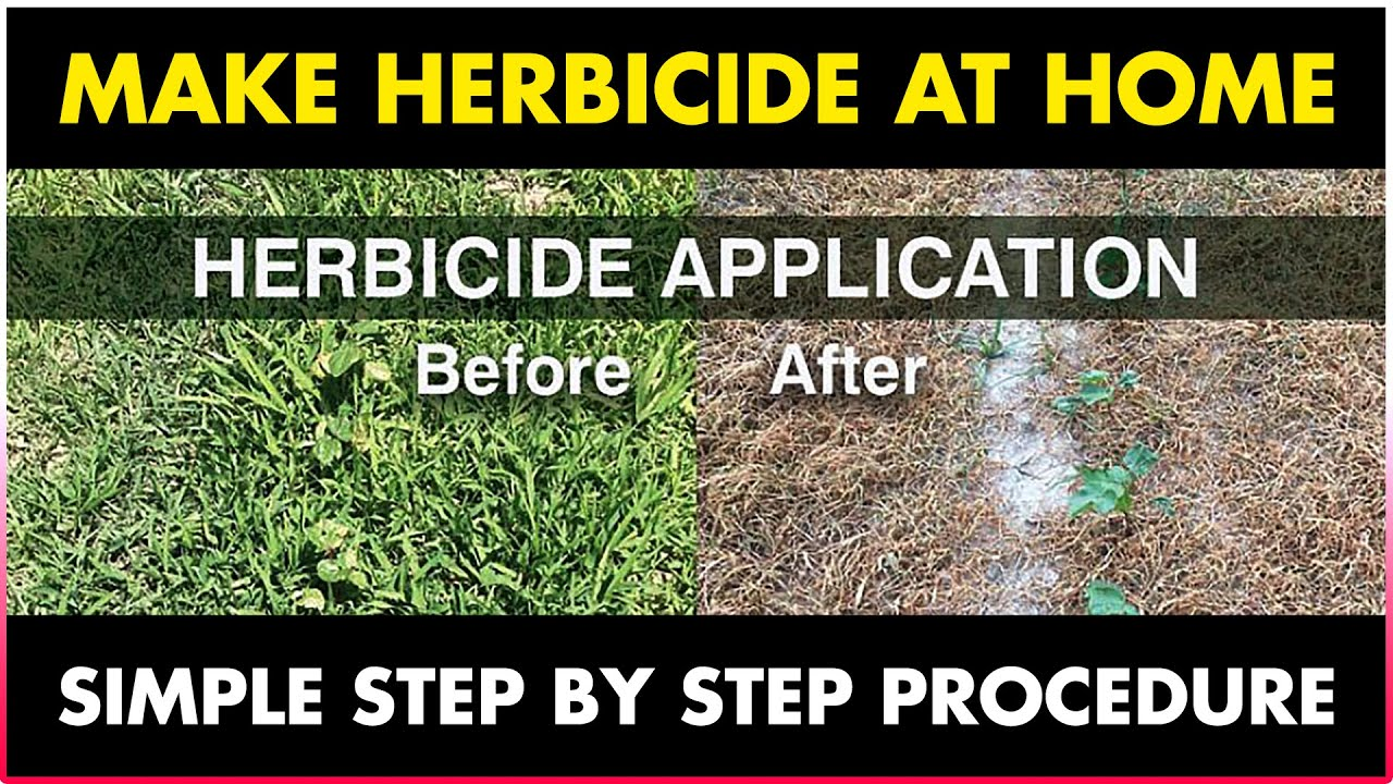 How To Make Weed Killer Herbicide At Home How To Kill Weeds Naturally Organic Herbicide Youtube