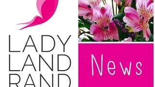 News / Neues Design + Neue Zeiten /LadyLandrand