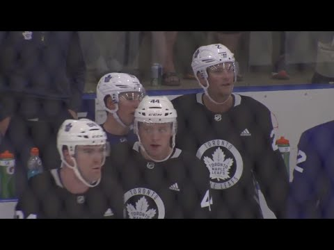 Leaf's Babcock called Reilly, told him about Hainsey pairing