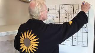 Tutorial #78  Sudoku. The Bug +1