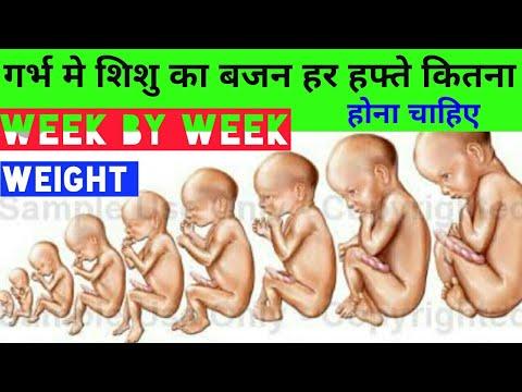 Weight of baby during pregnancy week by week