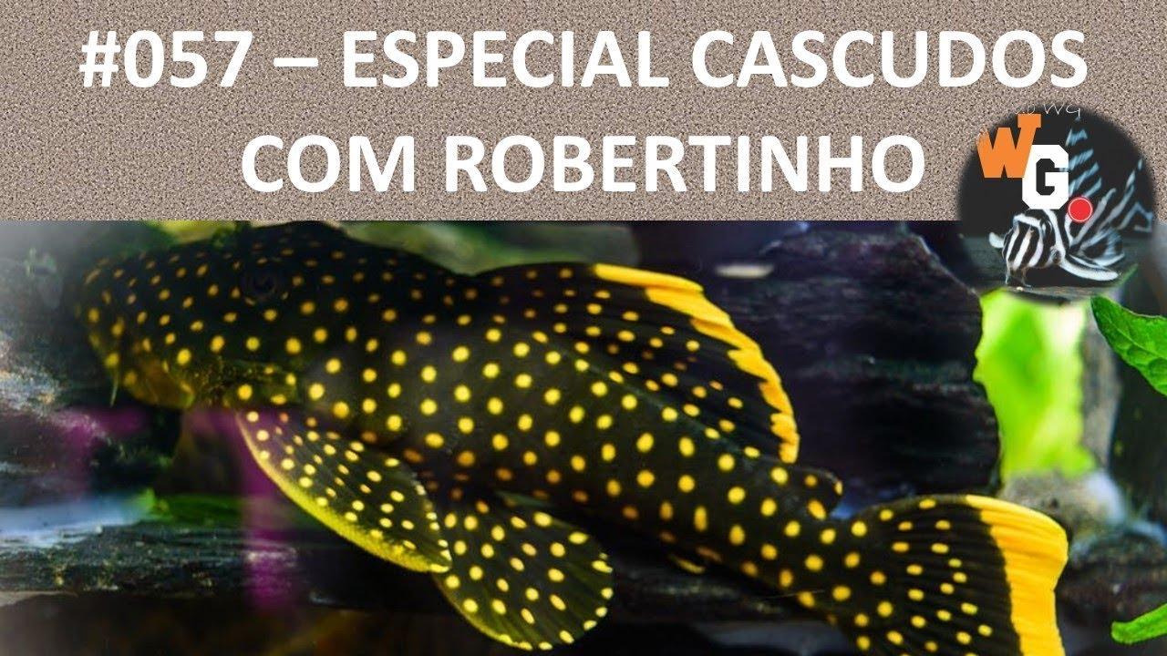Especial Cascudos com Roberto Ramberger [EP01] - #057