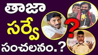 Survey Reveals The Winner Of Ap Elections 2019 | AndhraPradesh | Chandrababu | Ys Jagan