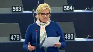 Karin Karlsbro 22 Oct 2019 plenary speech on income tax information