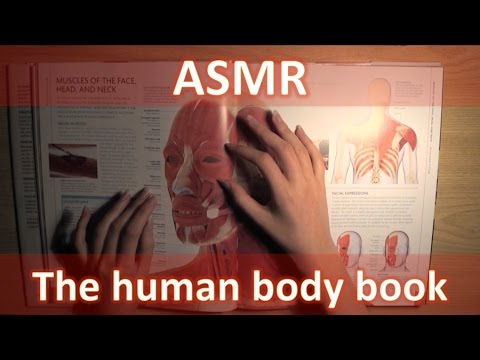 ASMR ENG Browsing and reading The human body book [whispering]