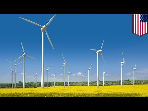Amazon is building gigantic wind farm in Texas comprised of more than 100 wind turbines - TomoNews
