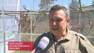 Reportáž TV Nova  -  Zoo v Táboře vábí na vzácné papoušky  A doufá v mláďata