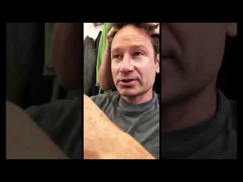 Gillian Anderson Instagram Story with David Duchovny 10212017