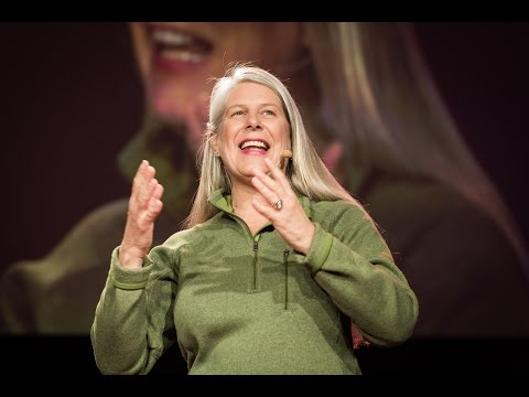 The right brain vs. left brain experience | Jill Bolte Taylor