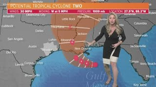Potential tropical cyclone in the Gulf of Mexico | Will it become Barry? | July 11, 2019 A.M. update