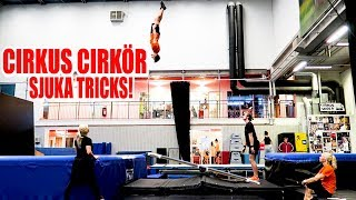 Vi testar Cirkus Cirkör