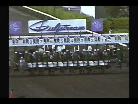1989 Breeders' Cup Classic - Sunday Silence + Pre & Post Race