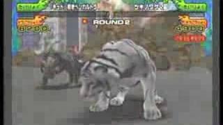 百獣大戦アニマルカイザー 若きふたごのトラ thumbnail