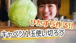 【キャベツが1玉あったなら】たっぷり使って美味しい料理に!【贅沢レシピで4品】 thumbnail