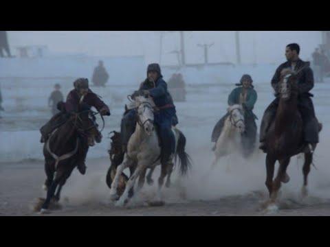 """Les chevaux """"bouzkashi"""" d'Afghanistan se préparent au combat..."""