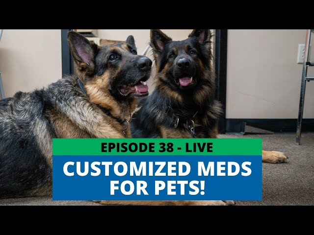 Helping Pets with Custom Medication