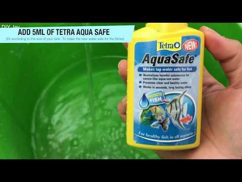 How to clean a Fish Tank Aquarium - Step by Step