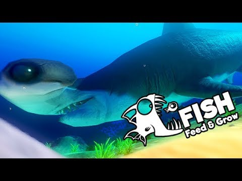 Feed and Grow Fish Gameplay German - Die größten Fische aller Zeiten