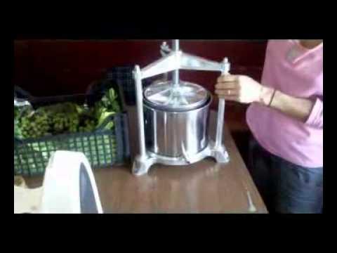 Come fare olio di oliva in casa  YouTube
