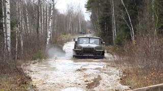 видео ЭРГО в Барнауле