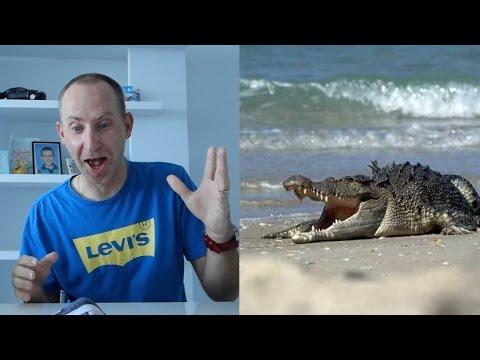 Krokodilhús Kóstoló letöltés