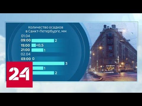 """""""Погода 24"""": пик потепления на Русской равнине ожидается в конце недели - Россия 24"""
