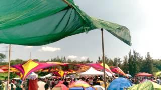 Nutek Festival 2016