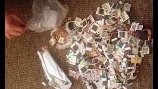 В Черняховске полицейские раскрыли кражу ювелирных изделий на 4,5 млн рублей
