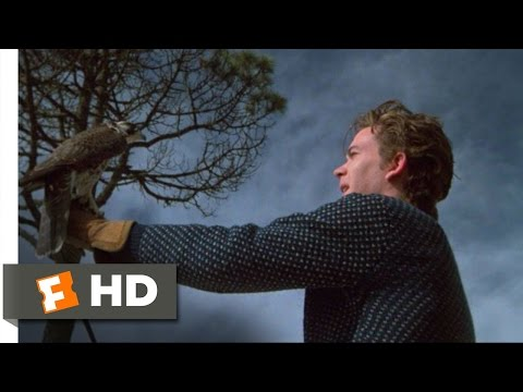 The Falcon and the Snowman (9/10) Movie CLIP - The Falcon is Free (1985) HD Mp3