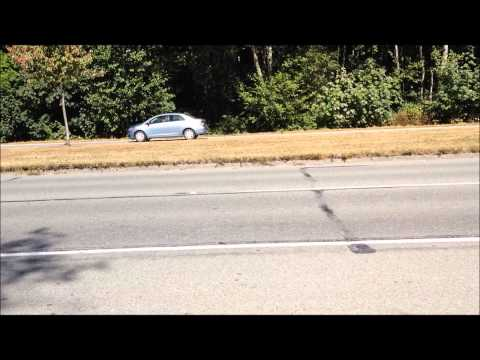Excited highway guy freak out