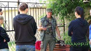 Курсы кинологов в Санкт-Петербурге