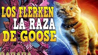 ¿Que son Los Flerken: La Raza de Goose? - Datos Banana