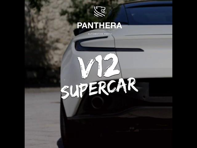 PANTHERA LEO Active Sound 4.0 - V12 Supercar