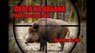 Охота на кабана в Украине видео