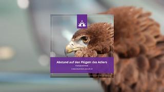Fantasiereise Erwachsene Abstand auf den Flügen des Adlers  ☯ ∣ Deutsch - Meditation