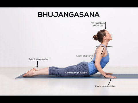 bhujangasana/cobra pose  how to do it and its benefits