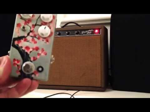 Birdman Reviews: 1962 Fender Princeton, JHS Morning Glory, Telecaster