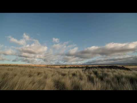 Matt Pryor - I Won't Be Afraid