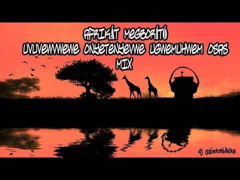 Afrikát megborító Uvuvwevwevwe Onyetenyevwe Ugwemuhwem Osas Mix (Music Video)