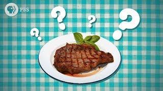Should You Let Meat Rest?