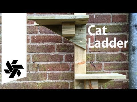 DIY Cat Ladder // Easy Woodworking Project