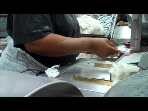 Testing cotton fiber quality