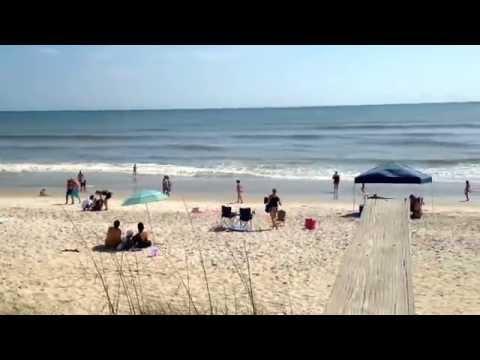 Sandy Paws Canova Dog Beach. The only dog beach in Brevard County, FL.