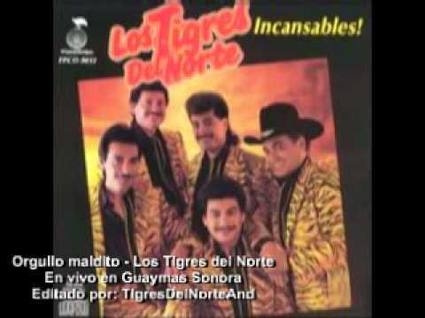 Orgullo maldito - Los Tigres del Norte En vivo - YouTube