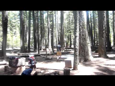 Yosemite: Little Yosemite Valley Backpacker's Camp