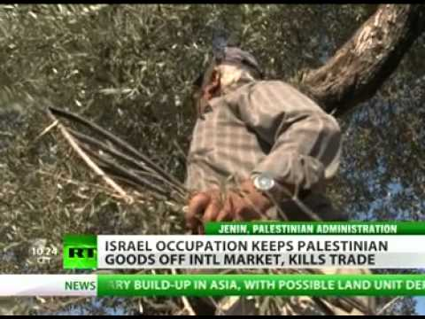 Made in Palestine Farmers in Occupied Territories struggle to sell