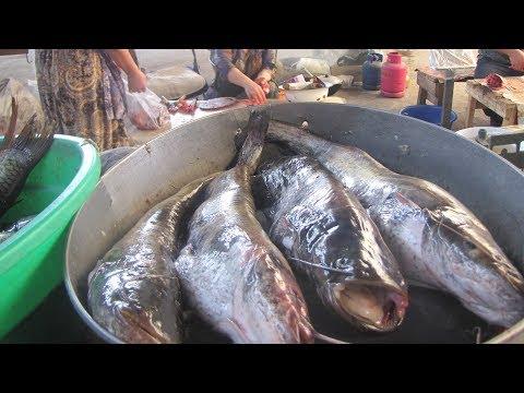 В Таджикистане подорожала рыба